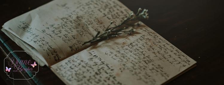 escrita_criativa_diane_bergher